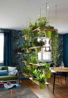 Diseños de jardines para interiores colgante