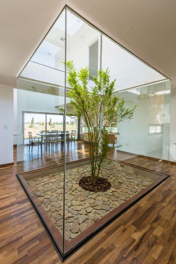 Diseños de jardines para interiores en vitrina