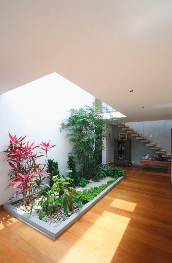 Diseños de jardines para interiores con tragaluz