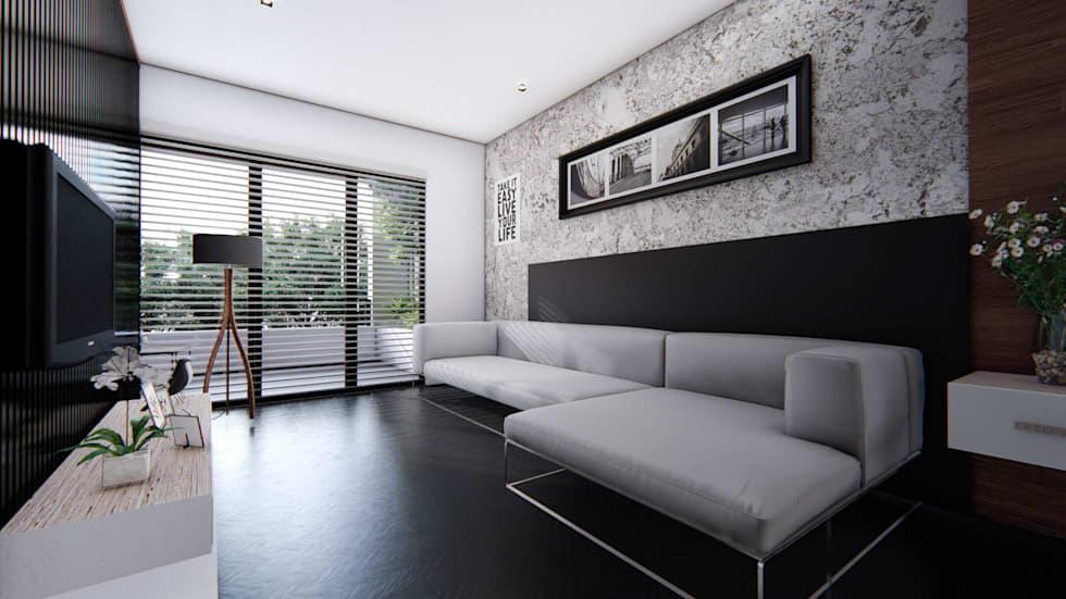 Proyecto para una residencia de estilo moderno contemporáneo sala principal