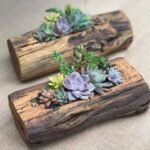 Ideas de jardines miniatura en troncos