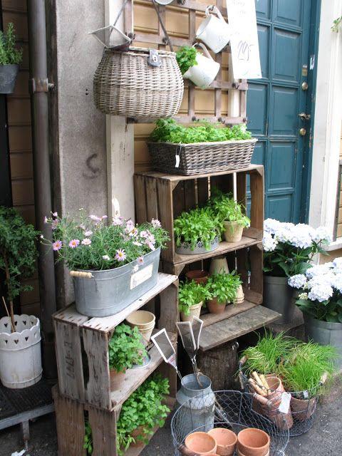 Macetas para decorar el patio trasero de tu casa
